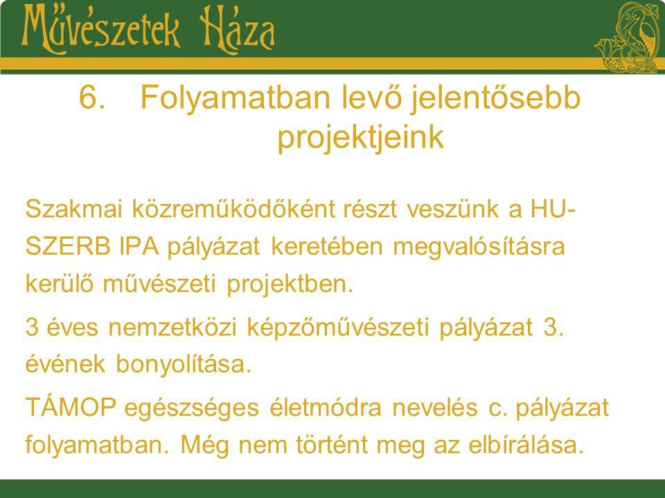 6.Folyamatban levő jelentősebb projektjeink Szakmai közreműködőként részt veszünk a HU- SZERB IPA pályázat keretében megvalósításra kerülő művészeti projektben.