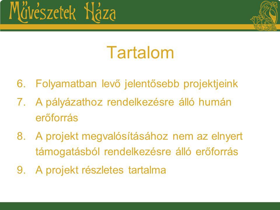 Tartalom 6.Folyamatban levő jelentősebb projektjeink 7.A pályázathoz rendelkezésre álló humán erőforrás 8.A projekt megvalósításához nem az elnyert támogatásból rendelkezésre álló erőforrás 9.A projekt részletes tartalma