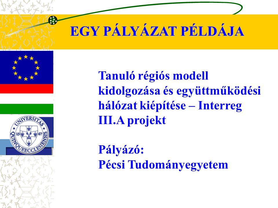EGY PÁLYÁZAT PÉLDÁJA Tanuló régiós modell kidolgozása és együttműködési hálózat kiépítése – Interreg III.A projekt Pályázó: Pécsi Tudományegyetem