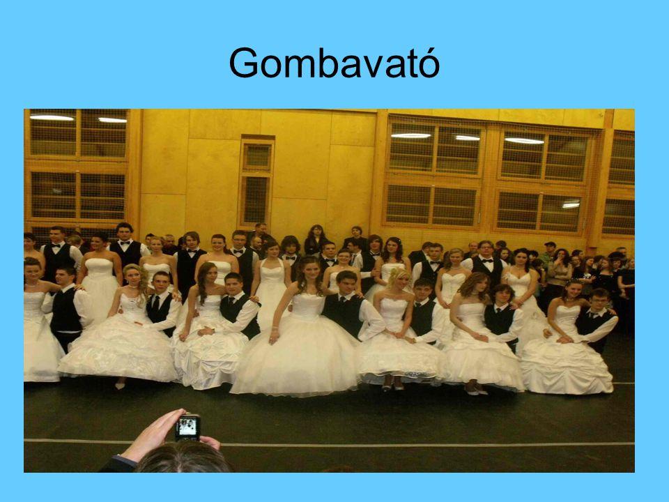 Gombavató