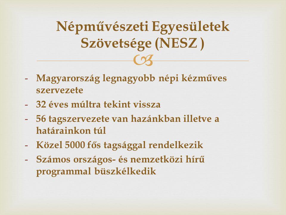  - NESZ Szakmai Bizottságai ( 15 szakmai és 5 szakmaközi: etikai-, ifjúsági-, képzés-oktatás-, marketing-és értékesítés, tagfelvételi ) - Díjak, elismerések ( NESZ által alapított díjak: Király Zsiga-, Aranykoszorú-, Hagyományőrző-, Év Mestere-, Év Ifjú Mestere és Év Műhelye ) - Országos szakmai rendezvények ( pl.