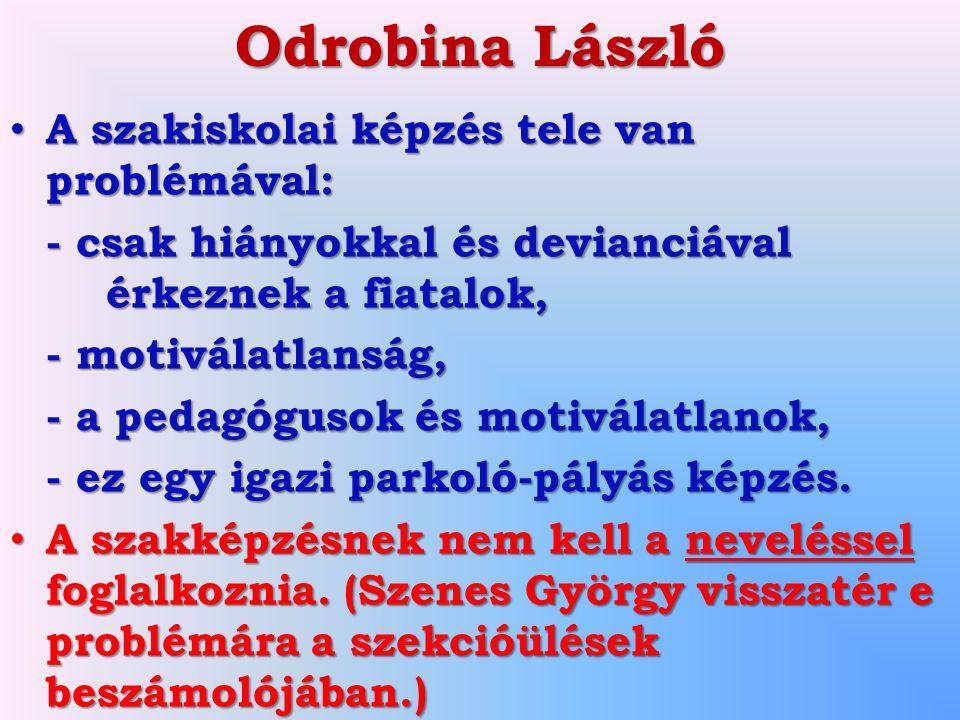 Odrobina László A szakiskolai képzés tele van problémával: A szakiskolai képzés tele van problémával: - csak hiányokkal és devianciával érkeznek a fia