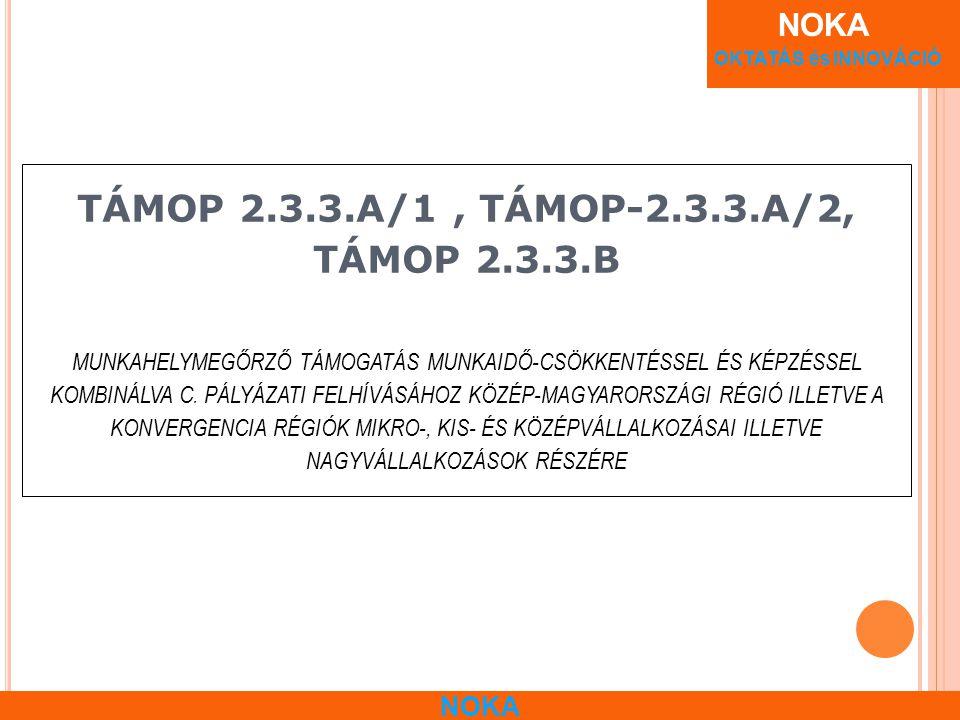 NOKA OKTATÁS és INNOVÁCIÓ NOKA TÁMOP 2.3.3.A/1, TÁMOP-2.3.3.A/2, TÁMOP 2.3.3.B MUNKAHELYMEGŐRZŐ TÁMOGATÁS MUNKAIDŐ-CSÖKKENTÉSSEL ÉS KÉPZÉSSEL KOMBINÁLVA C.