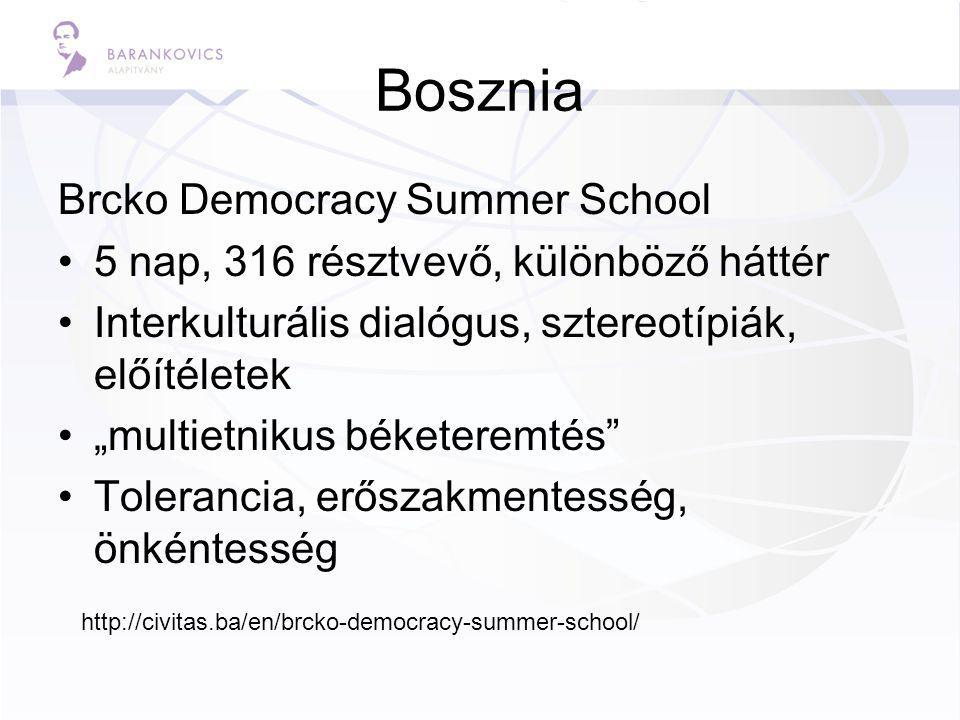 """Bosznia Brcko Democracy Summer School 5 nap, 316 résztvevő, különböző háttér Interkulturális dialógus, sztereotípiák, előítéletek """"multietnikus béketeremtés Tolerancia, erőszakmentesség, önkéntesség http://civitas.ba/en/brcko-democracy-summer-school/"""