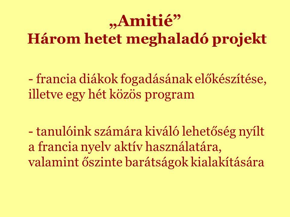 """""""Amitié Három hetet meghaladó projekt - francia diákok fogadásának előkészítése, illetve egy hét közös program - tanulóink számára kiváló lehetőség nyílt a francia nyelv aktív használatára, valamint őszinte barátságok kialakítására"""