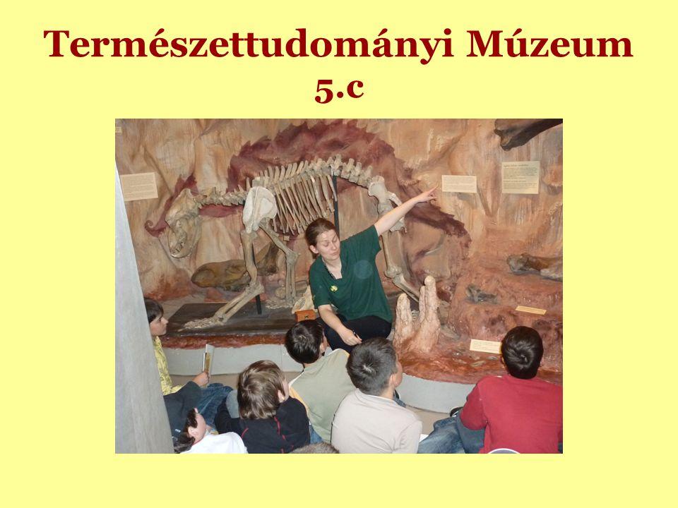 Természettudományi Múzeum 5.c