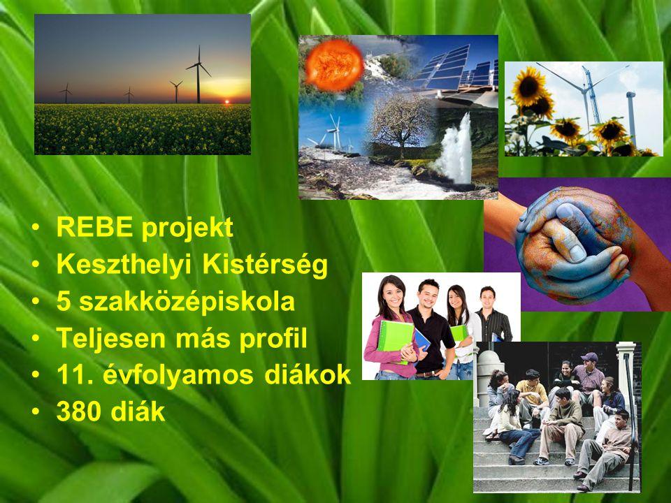 REBE projekt Keszthelyi Kistérség 5 szakközépiskola Teljesen más profil 11.