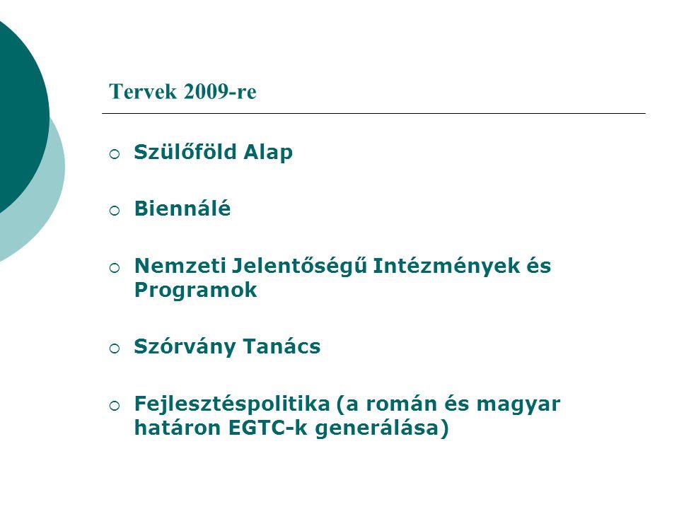 Tervek 2009-re  Szülőföld Alap  Biennálé  Nemzeti Jelentőségű Intézmények és Programok  Szórvány Tanács  Fejlesztéspolitika (a román és magyar ha