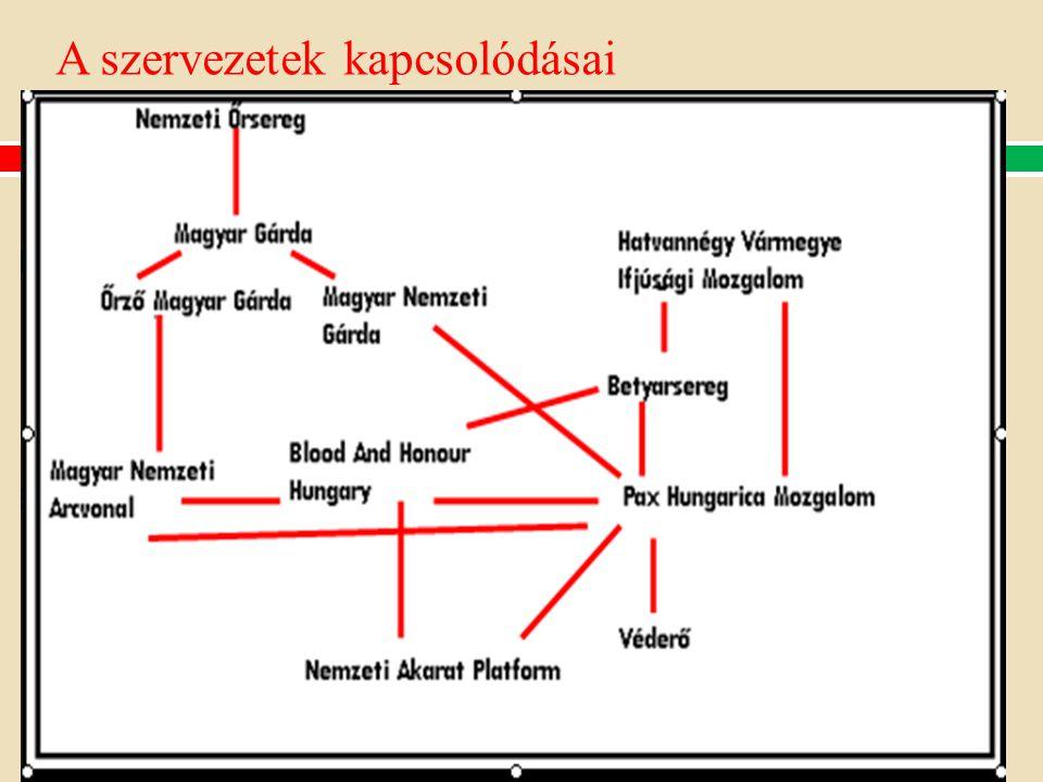 A szervezetek kapcsolódásai