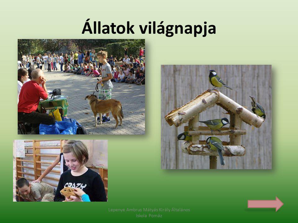Lepenye Ambrus Mátyás Király Általános Iskola Pomáz Állatok világnapja