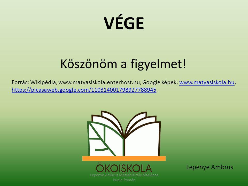 VÉGE Köszönöm a figyelmet! Lepenye Ambrus Mátyás Király Általános Iskola Pomáz Lepenye Ambrus Forrás: Wikipédia, www.matyasiskola.enterhost.hu, Google