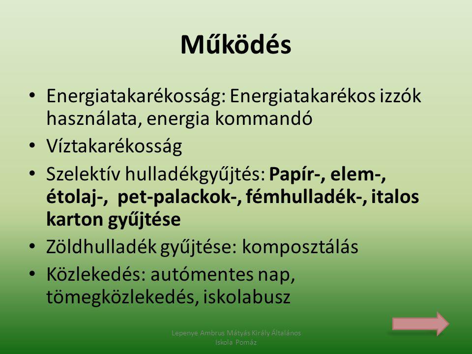 Helyes Lepenye Ambrus Mátyás Király Általános Iskola Pomáz