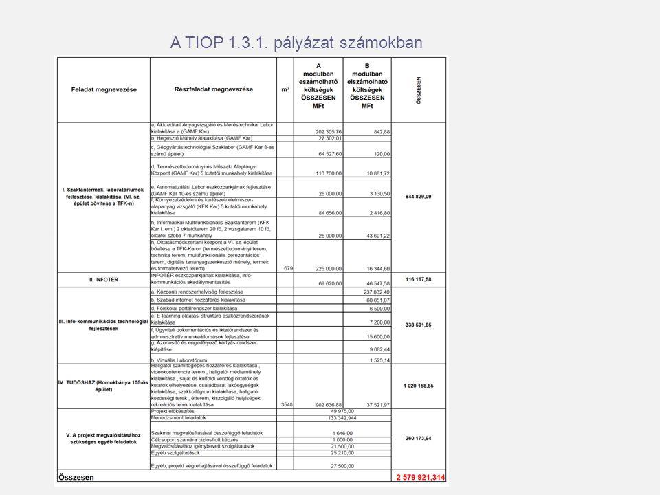 A TIOP 1.3.1. pályázat számokban