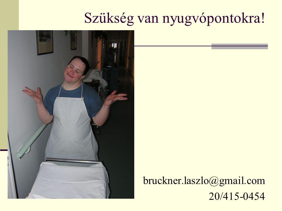 Szükség van nyugvópontokra! bruckner.laszlo@gmail.com 20/415-0454