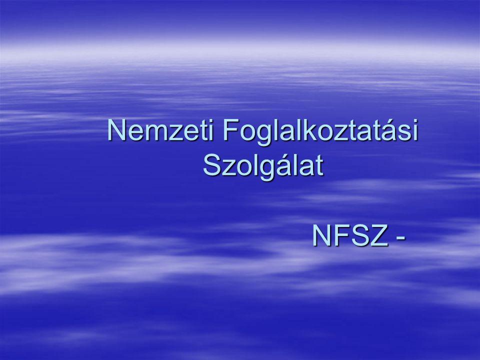 Nemzeti Foglalkoztatási Szolgálat NFSZ -