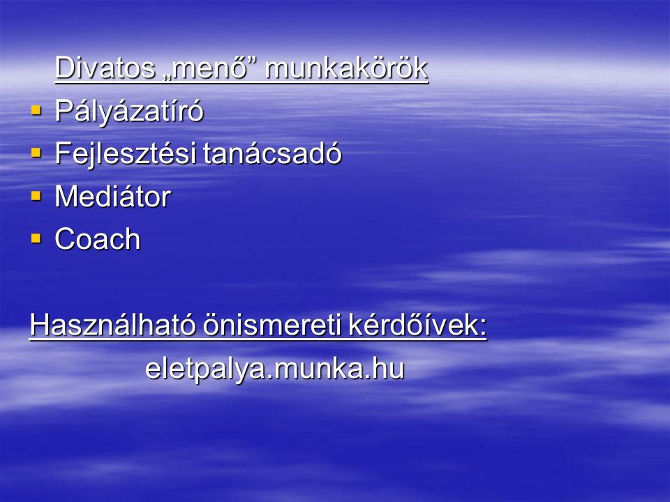 """Divatos """"menő"""" munkakörök  Pályázatíró  Fejlesztési tanácsadó  Mediátor  Coach Használható önismereti kérdőívek: eletpalya.munka.hu eletpalya.munk"""
