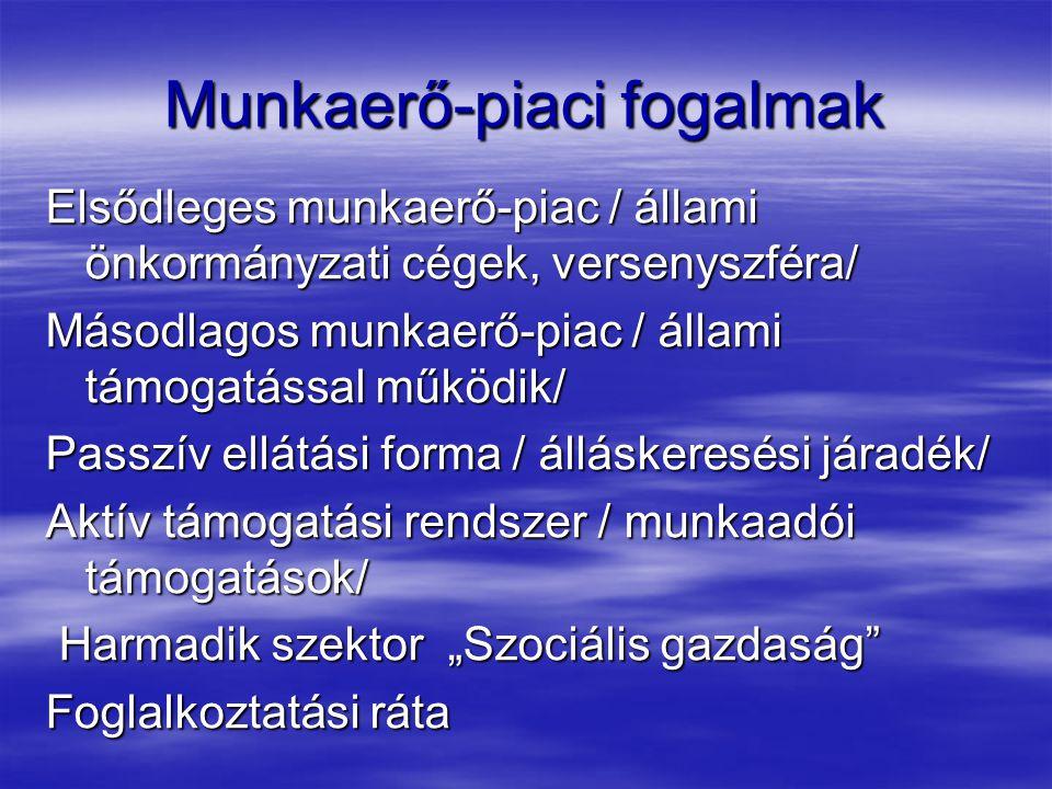 Munkaerő-piac sajátosságai  Alanya: az EMBER  Munkavállaló célja: érdekeinek az érvényesítése  Munkaadó célja: olcsó munkaerő megszerzése  Ellentétes érdekek, konfliktus megoldás, érdekegyeztetés