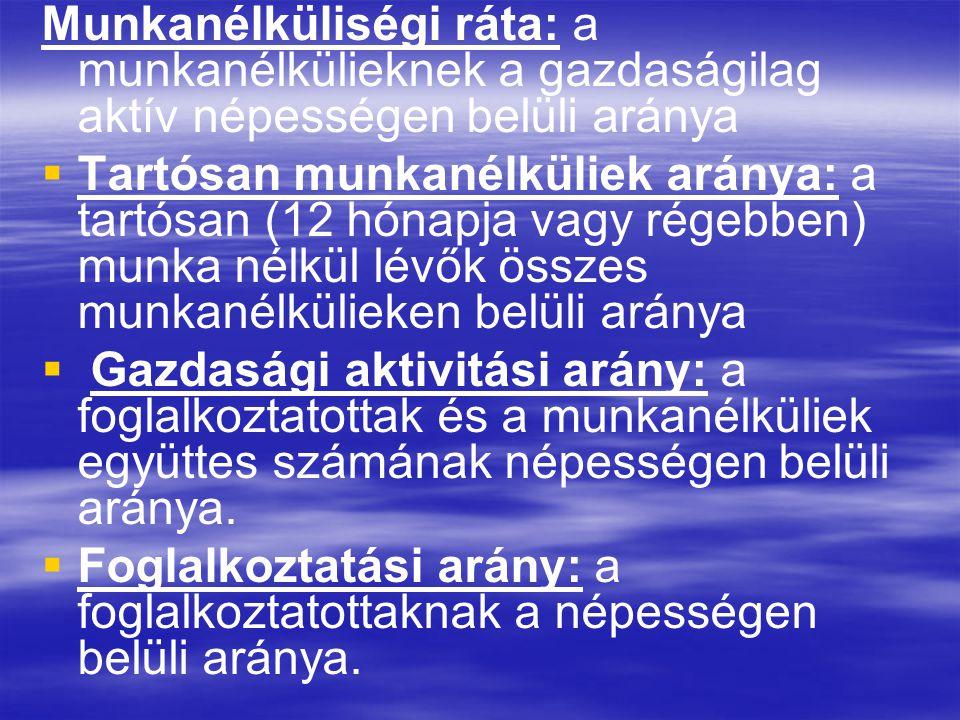 -Alacsony foglalkoztatási szint MUNKAERŐHIÁNY MUNKAERŐHIÁNY - Magas inaktivitás - Alacsony iskolázottság - Stratégia hiánya - Mobilitás hiánya - A tőke keletre megy - Hátrányos helyzetű csoportok A magyar munkaerőpiac sajátosságai