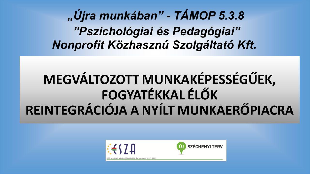 """""""Újra munkában"""" - TÁMOP 5.3.8 """"Pszichológiai és Pedagógiai"""" Nonprofit Közhasznú Szolgáltató Kft. MEGVÁLTOZOTT MUNKAKÉPESSÉGŰEK, FOGYATÉKKAL ÉLŐK REINT"""
