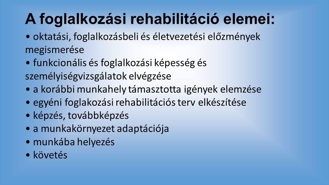 A foglalkozási rehabilitáció elemei: oktatási, foglalkozásbeli és életvezetési előzmények megismerése funkcionális és foglalkozási képesség és személy
