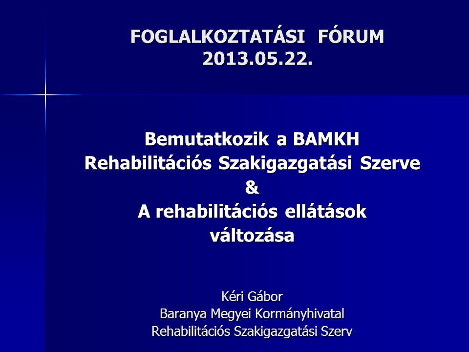 A REHABILITÁCIÓS SZAKIGAZGATÁSI SZERV FELÉPÍTÉSE  létrehozása : 2012.07.01.