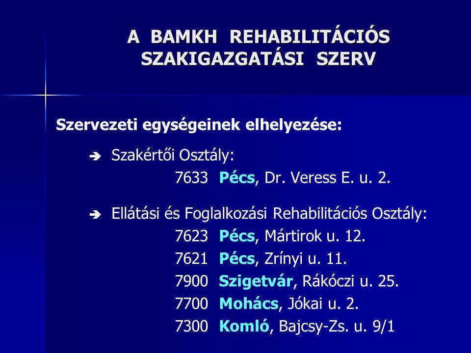 A REHABILITÁCIÓS FELADATELLÁTÁS HELYSZÍNEI BARANYA MEGYÉBEN RSzSz rehabilitációs iroda RSzSz rehabilitációs feladatellátó hely