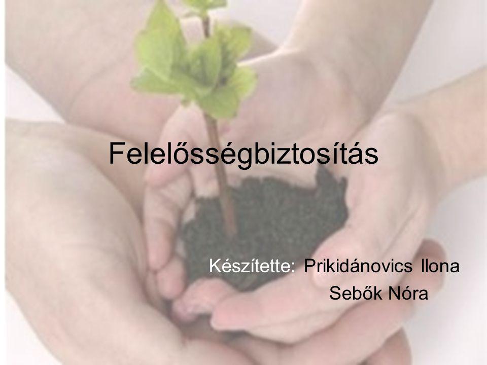 Felelősségbiztosítás Készítette: Prikidánovics Ilona Sebők Nóra