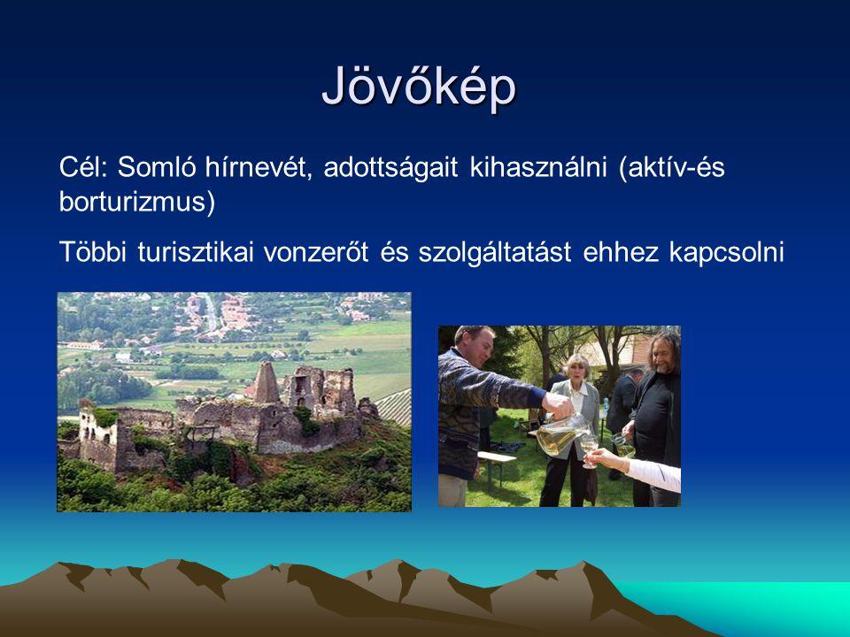Jövőkép Cél: Somló hírnevét, adottságait kihasználni (aktív-és borturizmus) Többi turisztikai vonzerőt és szolgáltatást ehhez kapcsolni