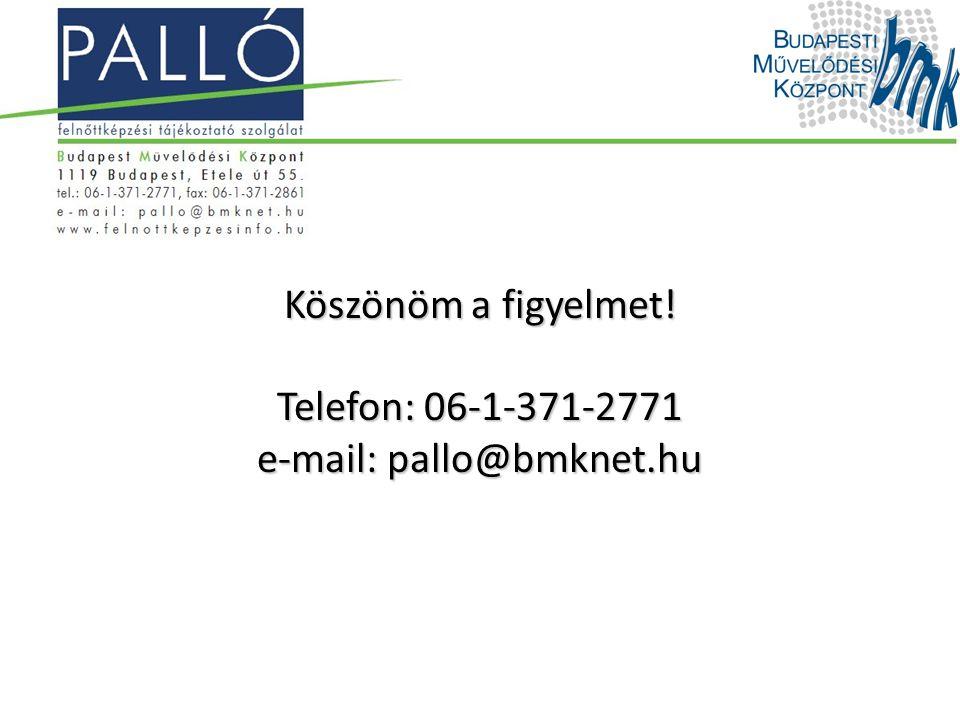 Köszönöm a figyelmet! Telefon: 06-1-371-2771 e-mail: pallo@bmknet.hu