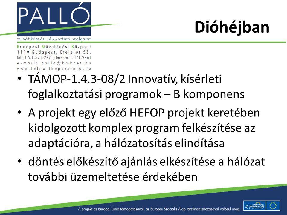 Dióhéjban TÁMOP-1.4.3-08/2 Innovatív, kísérleti foglalkoztatási programok – B komponens A projekt egy előző HEFOP projekt keretében kidolgozott komple