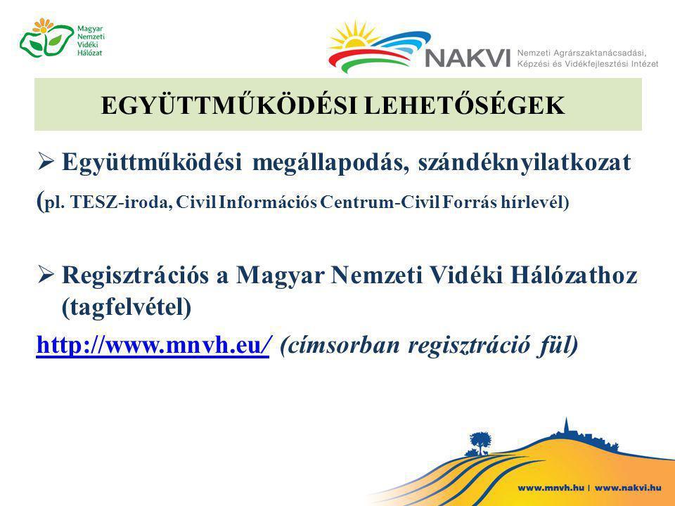 EGYÜTTMŰKÖDÉSI LEHETŐSÉGEK  Együttműködési megállapodás, szándéknyilatkozat ( pl.