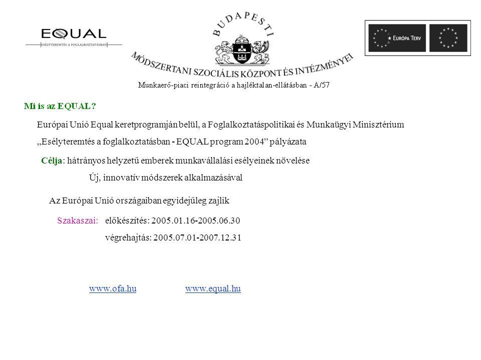 """www.ofa.huwww.equal.hu Szakaszai: előkészítés: 2005.01.16-2005.06.30 végrehajtás: 2005.07.01-2007.12.31 Európai Unió Equal keretprogramján belül, a Foglalkoztatáspolitikai és Munkaügyi Minisztérium """"Esélyteremtés a foglalkoztatásban - EQUAL program 2004 pályázata Célja: hátrányos helyzetű emberek munkavállalási esélyeinek növelése Új, innovatív módszerek alkalmazásával Az Európai Unió országaiban egyidejűleg zajlik"""