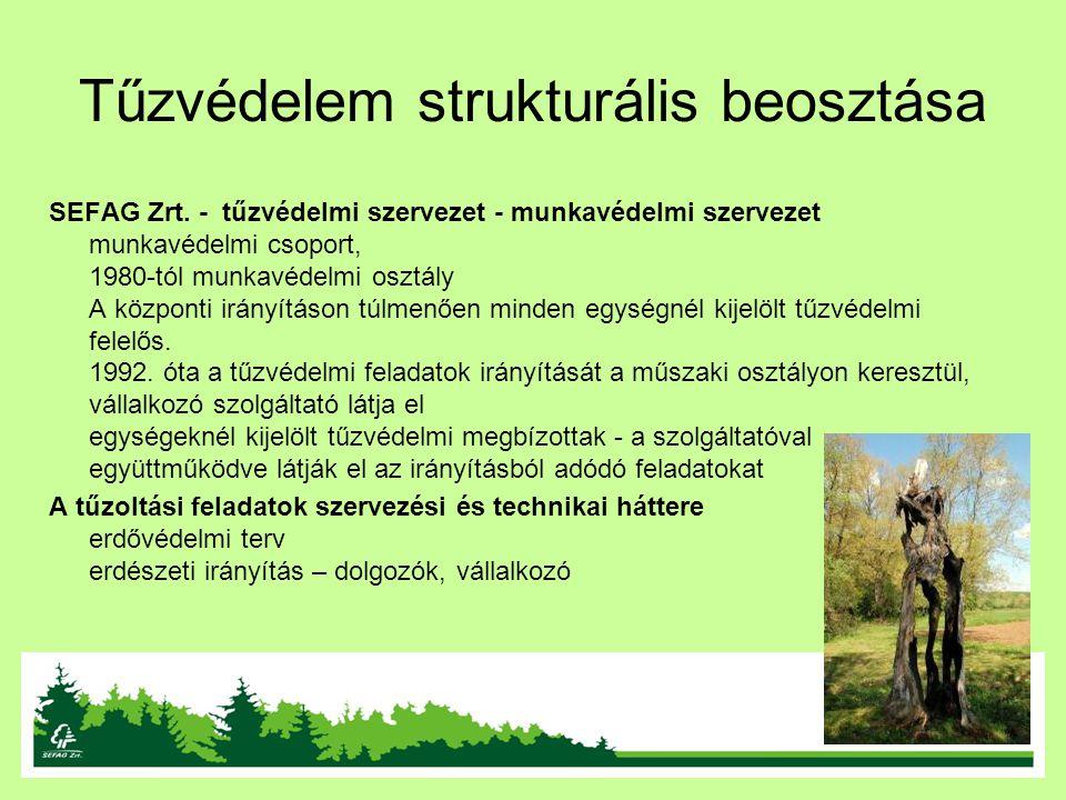 Tűzvédelem strukturális beosztása SEFAG Zrt. - tűzvédelmi szervezet - munkavédelmi szervezet munkavédelmi csoport, 1980-tól munkavédelmi osztály A köz