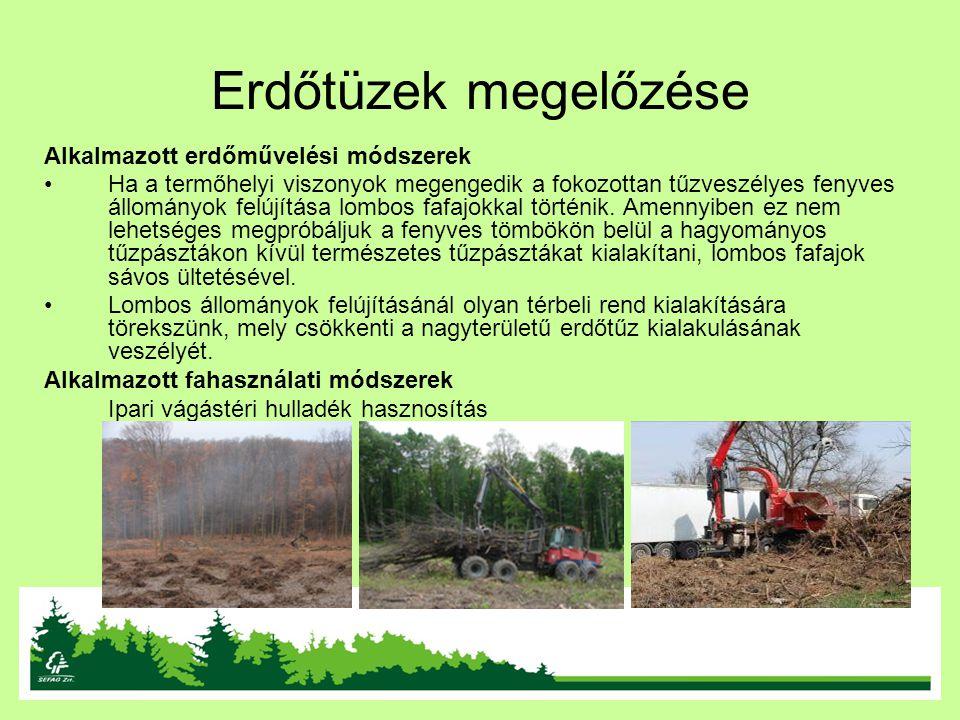 Erdőtüzek megelőzése Alkalmazott erdőművelési módszerek Ha a termőhelyi viszonyok megengedik a fokozottan tűzveszélyes fenyves állományok felújítása l