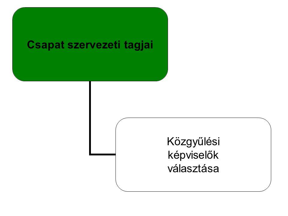Csapat szervezeti tagjai Közgyűlési képviselők választása