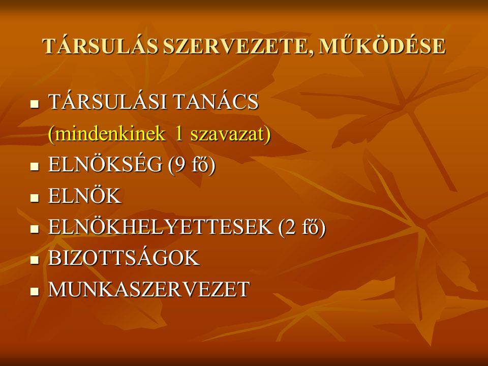 TÁRSULÁS SZERVEZETE, MŰKÖDÉSE TÁRSULÁSI TANÁCS TÁRSULÁSI TANÁCS (mindenkinek 1 szavazat) ELNÖKSÉG (9 fő) ELNÖKSÉG (9 fő) ELNÖK ELNÖK ELNÖKHELYETTESEK (2 fő) ELNÖKHELYETTESEK (2 fő) BIZOTTSÁGOK BIZOTTSÁGOK MUNKASZERVEZET MUNKASZERVEZET