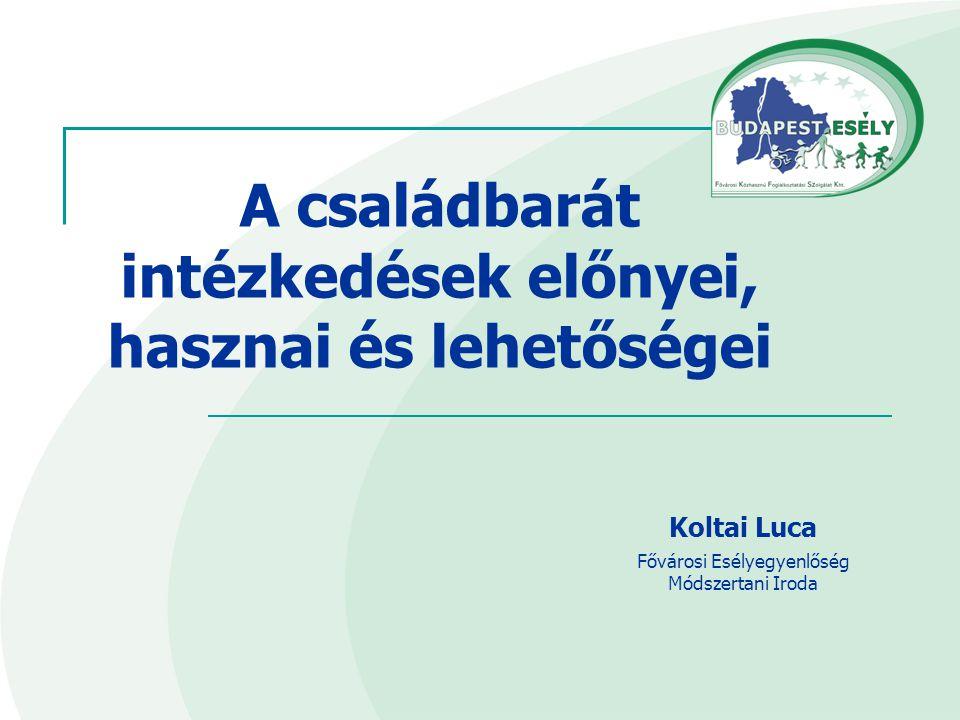 Koltai Luca Fővárosi Esélyegyenlőség Módszertani Iroda A családbarát intézkedések előnyei, hasznai és lehetőségei