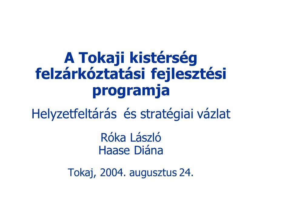 A Tokaji kistérség felzárkóztatási fejlesztési programja Helyzetfeltárás és stratégiai vázlat Róka László Haase Diána Tokaj, 2004. augusztus 24.