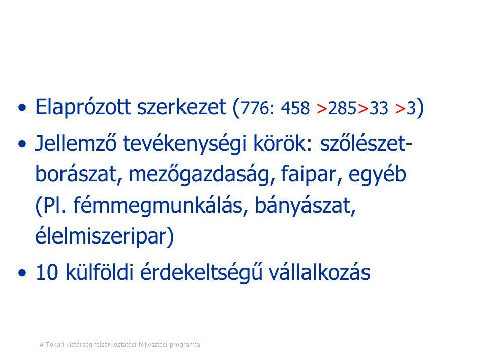 Vállalkozások A Tokaji kistérség felzárkóztatási fejlesztési programja 16. oldal Elaprózott szerkezet ( 776: 458 >285>33 >3 ) Jellemző tevékenységi kö