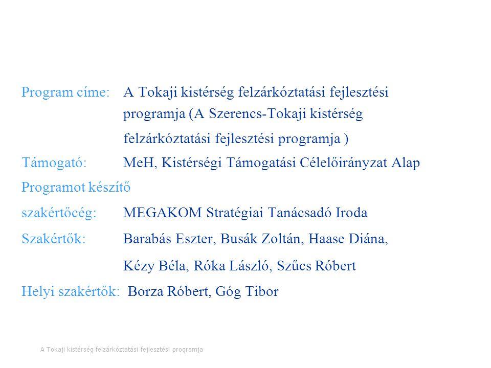A programra vonatkozó legfontosabb információk Program címe: A Tokaji kistérség felzárkóztatási fejlesztési programja (A Szerencs-Tokaji kistérség fel
