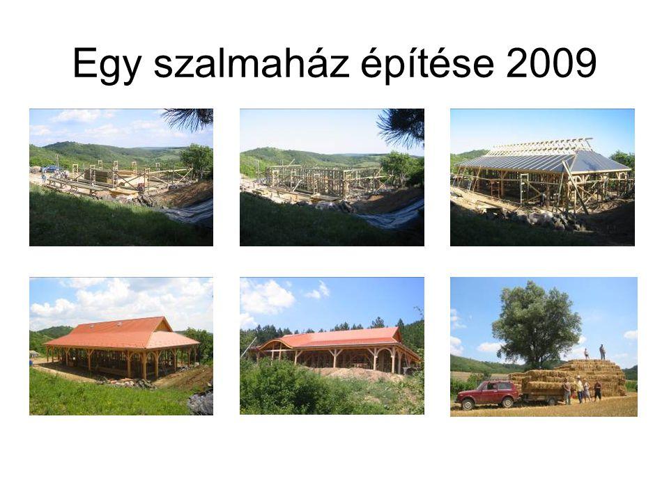 Egy szalmaház építése 2009