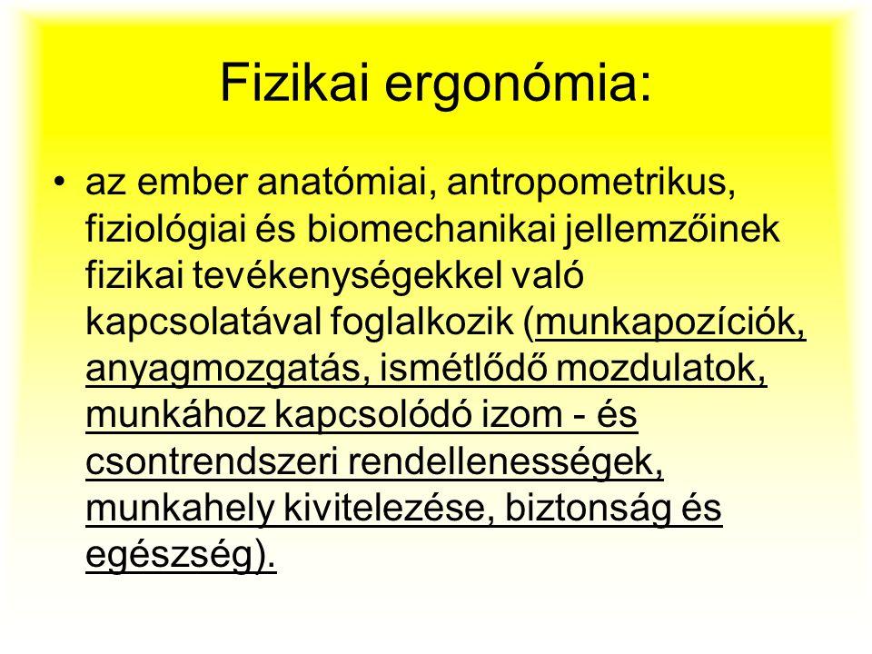 Fizikai ergonómia: az ember anatómiai, antropometrikus, fiziológiai és biomechanikai jellemzőinek fizikai tevékenységekkel való kapcsolatával foglalko
