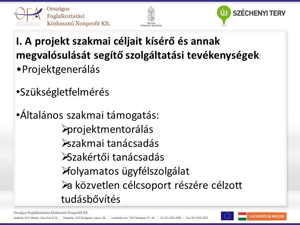 I. A projekt szakmai céljait kísérő és annak megvalósulását segítő szolgáltatási tevékenységek : Projektgenerálás Szükségletfelmérés Általános szakmai
