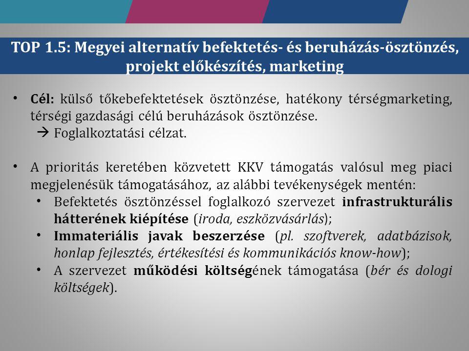 Cél: külső tőkebefektetések ösztönzése, hatékony térségmarketing, térségi gazdasági célú beruházások ösztönzése.  Foglalkoztatási célzat. A prioritás