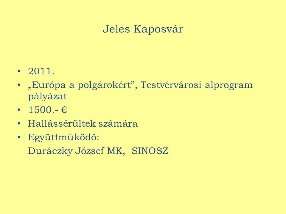 Jeles Kaposvár 2011.