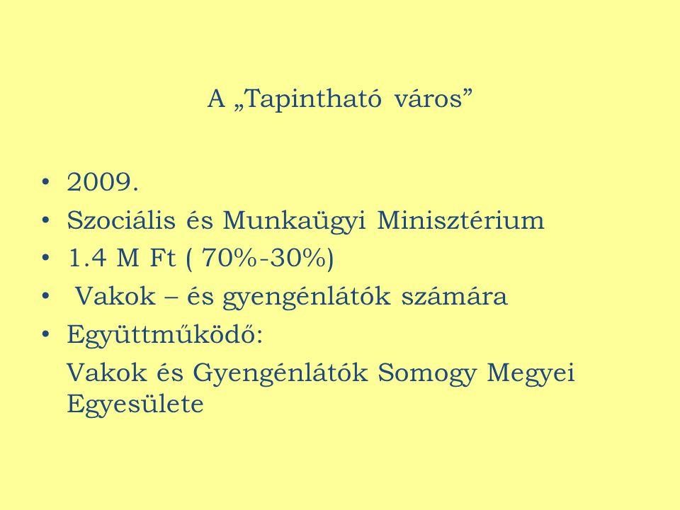 """A """"Tapintható város 2009."""