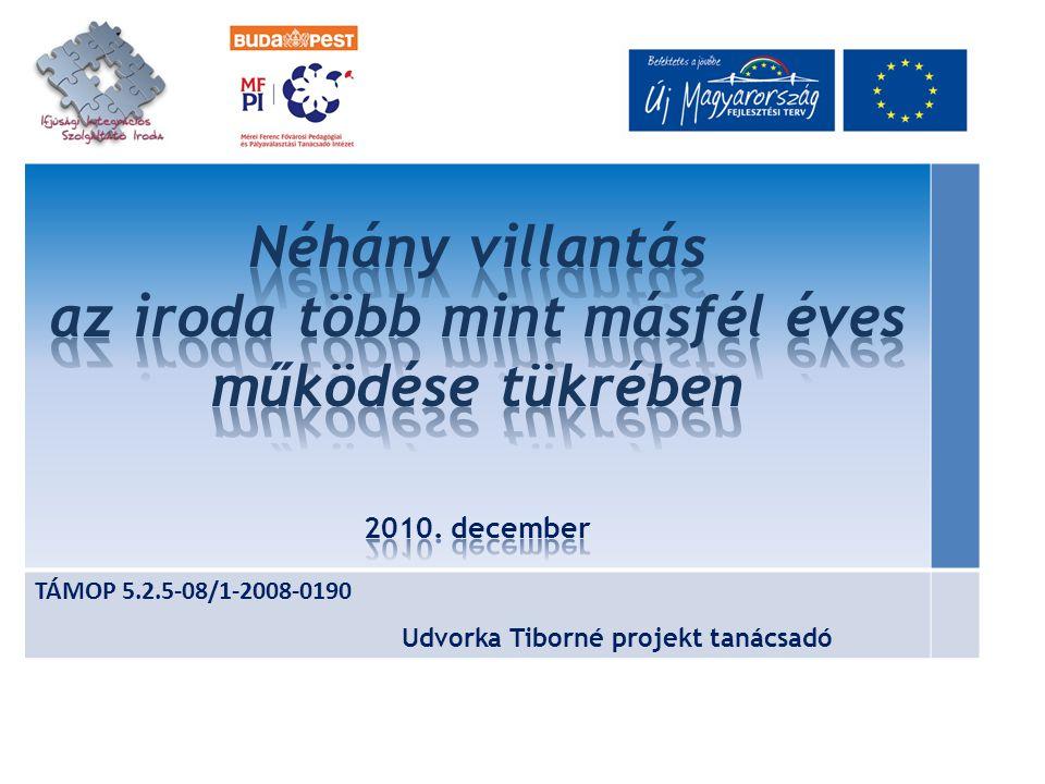 TÁMOP 5.2.5-08/1-2008-0190 Udvorka Tiborné projekt tanácsadó