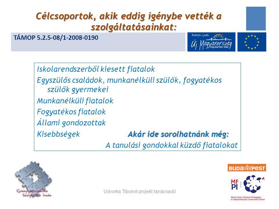 Iskolarendszerből kiesett fiatalok Egyszülős családok, munkanélküli szülők, fogyatékos szülők gyermekei Munkanélküli fiatalok Fogyatékos fiatalok Állami gondozottak Akár ide sorolhatnánk még: Kisebbségek Akár ide sorolhatnánk még: A tanulási gondokkal küzdő fiatalokat Udvorka Tiborné projekt tanácsadó 14 TÁMOP 5.2.5-08/1-2008-0190