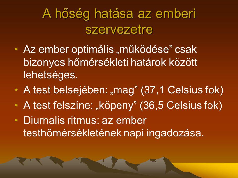 """A hőség hatása az emberi szervezetre Az ember optimális """"működése"""" csak bizonyos hőmérsékleti határok között lehetséges. A test belsejében: """"mag"""" (37,"""