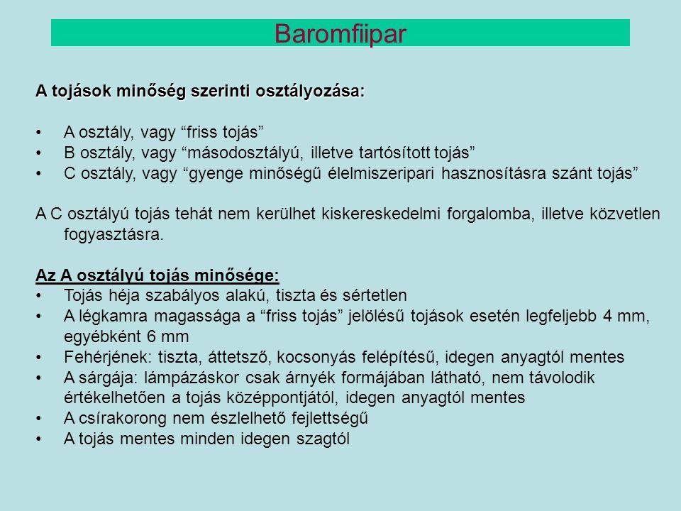 """A tojások minőség szerinti osztályozása: A osztály, vagy """"friss tojás"""" B osztály, vagy """"másodosztályú, illetve tartósított tojás"""" C osztály, vagy """"gye"""